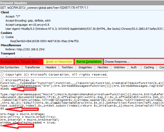 IIS Rewrite outbound - Dynamics CRM - Script Error due to characters