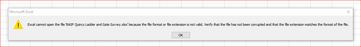 excel cannot open the file  xlsx because the file format or