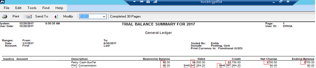 How To Remove Symbols From Trial Balance Summary Report